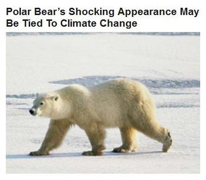 09-15-2015 WPHL 16-05 - HP weeps for polar bear