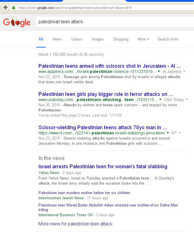 Palestinian-teen-attacks-search2