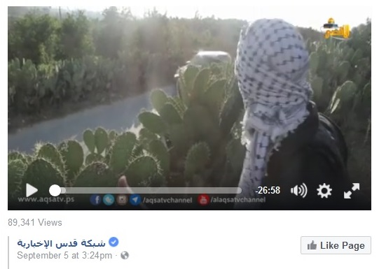 07sept16-pal-terror-video-on-fb-scap-1